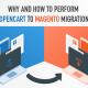 Как с OpenCart перейти на Magento
